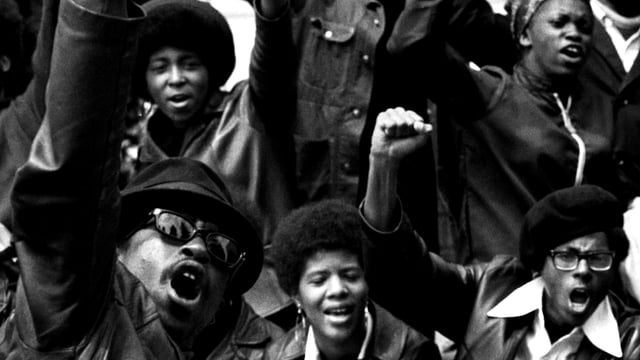 How The Black Panthers Fought Black Genocide - Sickle Cell Anemia
